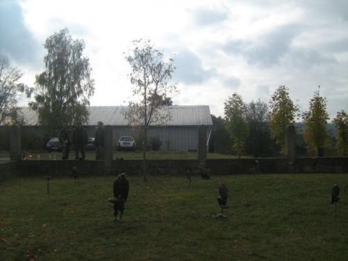 Podzimní výstava, Hrad Nečtiny - sokolníci 24.10.2009
