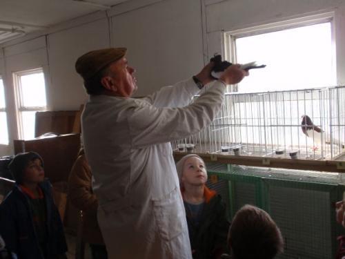 Chovatelská výstava Hrad Nečtiny 23.10.2009