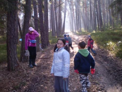 Úklid lesa duben 2009