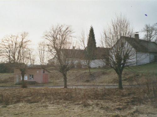 Čestětín - náves