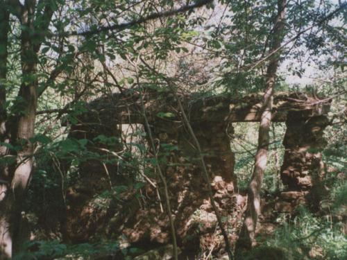 Zbytky zdiva domů vzaniklé obci